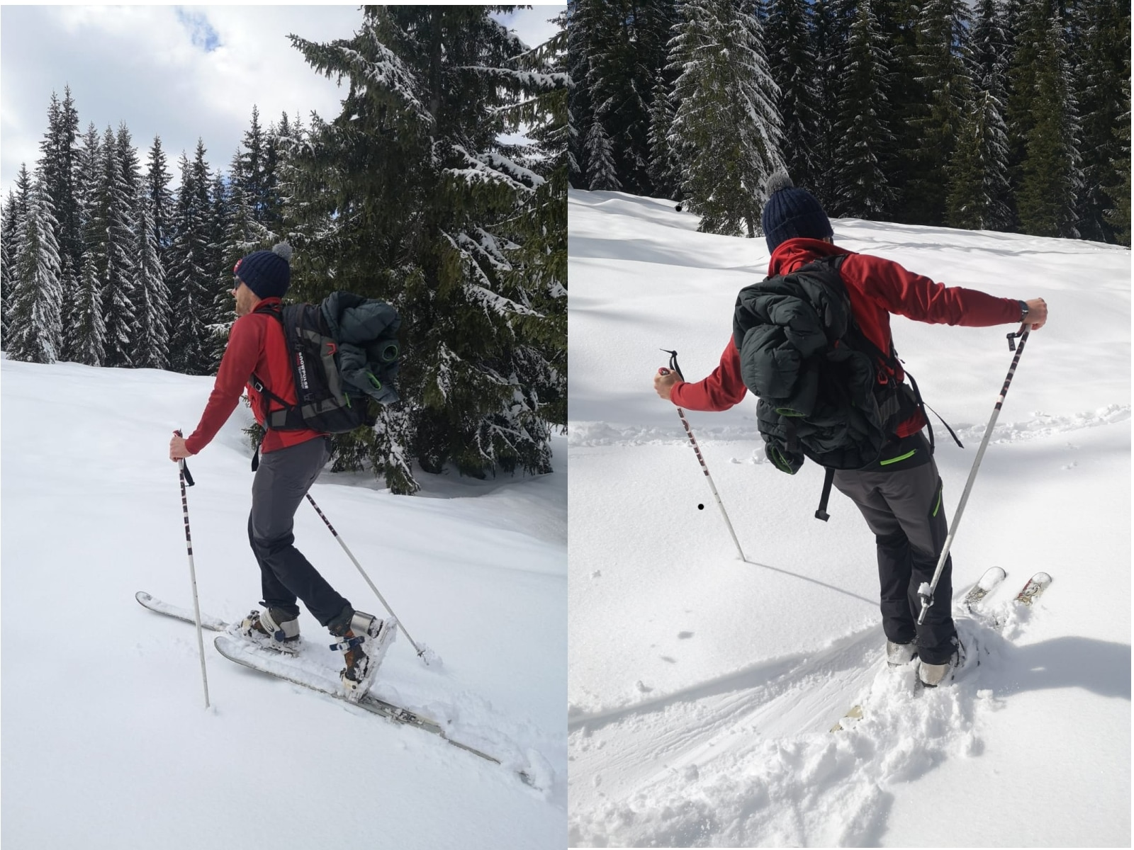 Free-Ski